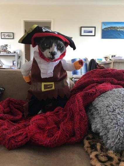 Pirate Smudge
