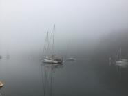 Early morning mist, Refuge Bay