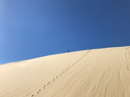 Pete at the top of a huge Fraser Island dune