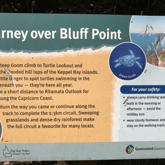 About Bluff Point